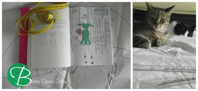 Bette Davis Dress1